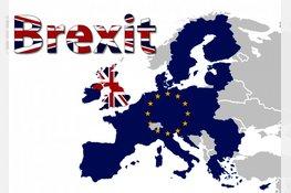 Instellingen melden zich bij DNB om brexit